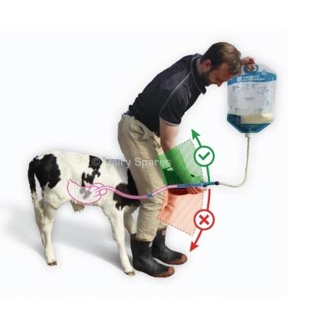 Correct Position Feeding Image